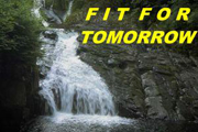 FitForTomorow